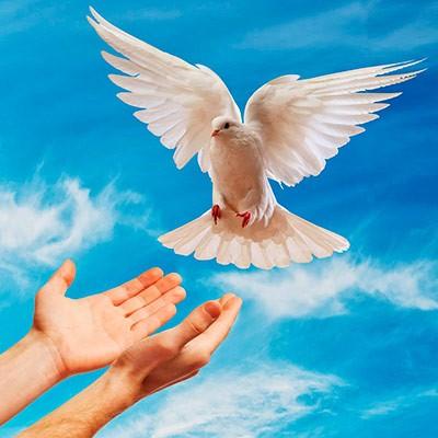 Resultado de imagen para vida en el espiritu
